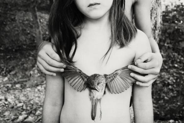 105-birdcage-dara-scully