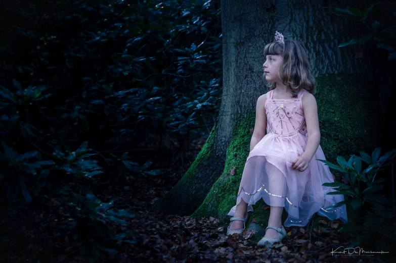 the-fairy-princess-of-the-dark-forest