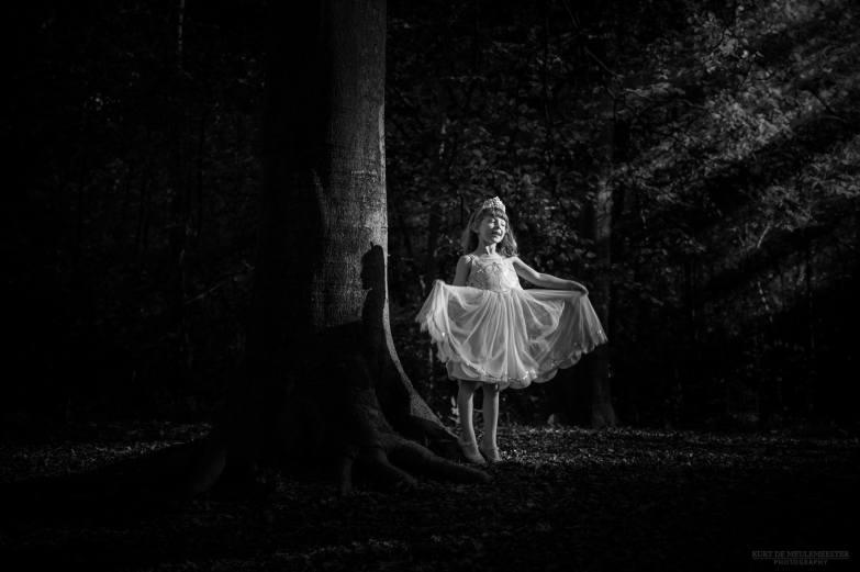 the-light-fairy